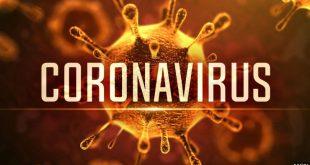 crona- virus