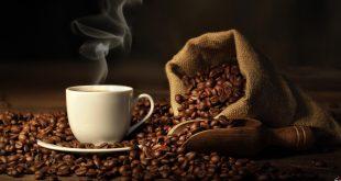 cafee-book-read